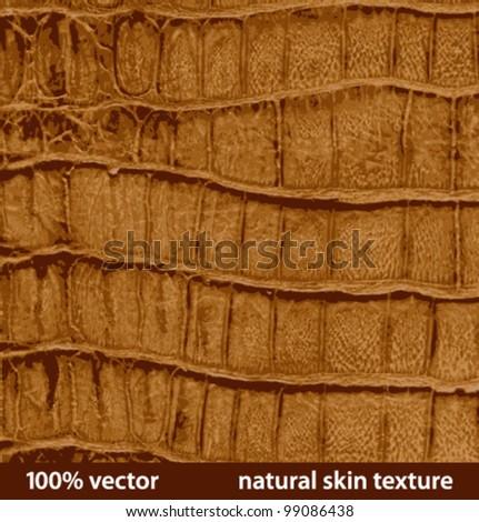 illustration natural skin