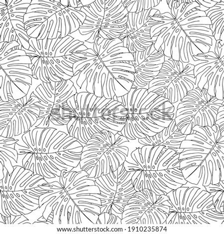 illustration of a black leaves