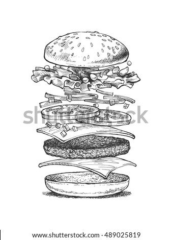 illustration of a burger, vector drawing, sandwich ingredients,
