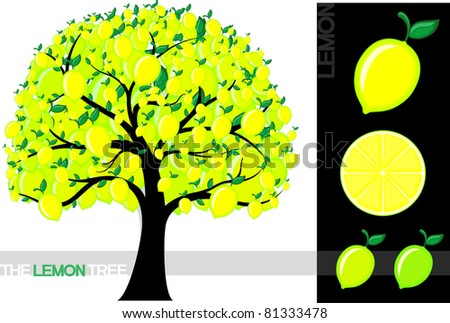 Illustration of a cartoon lemon tree isolated on white background, very useful for several concepts