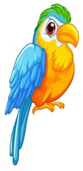 Illustration of a close up parrot