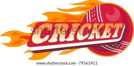 illustration of a cricket sports ball with fire and flames on isolated white  background done in retro style