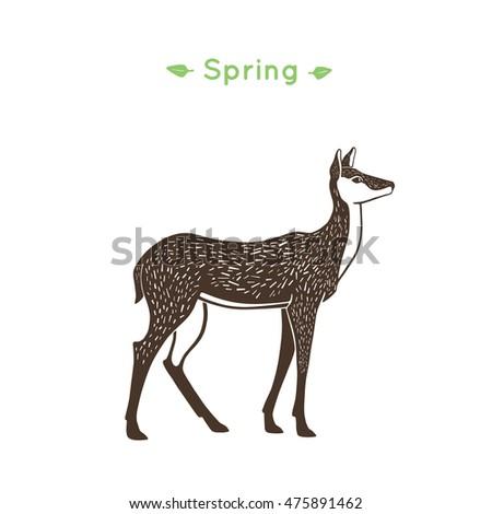 illustration of a doe in