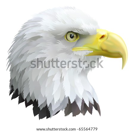 Illustration of a eagles head in profile.