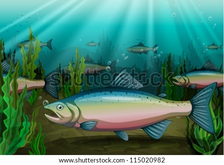 illustration of a fish under sea water