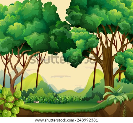 illustration of a forest view