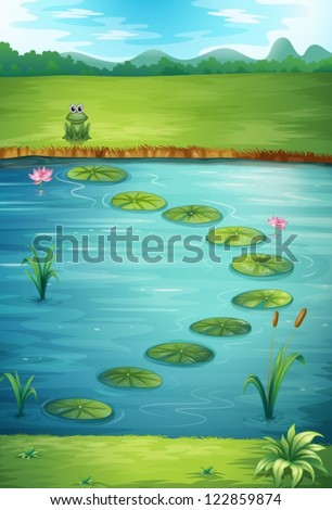illustration of a frog and a