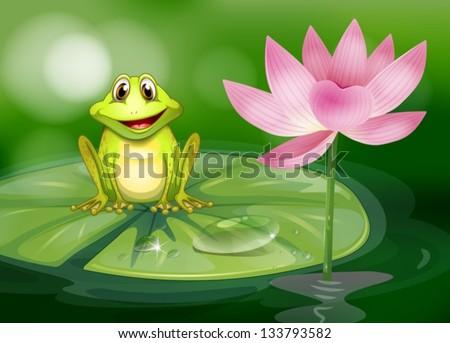 illustration of a frog beside