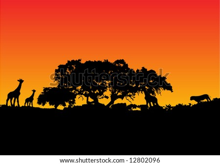 illustration of a giraffe with sunset background