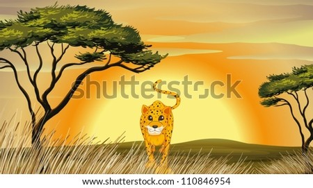 illustration of a leopard in