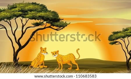 illustration of a leopard under