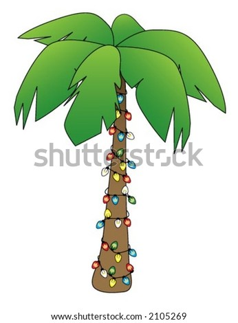 illustration of a palm tree