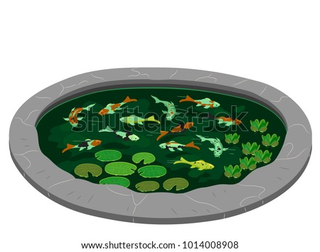 Illustration of a Pond Full of Koi and Water Lilies Inside