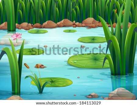 illustration of a pond with