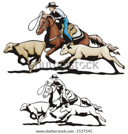 super Used roping horses