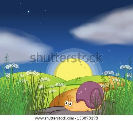 illustration of a snail along