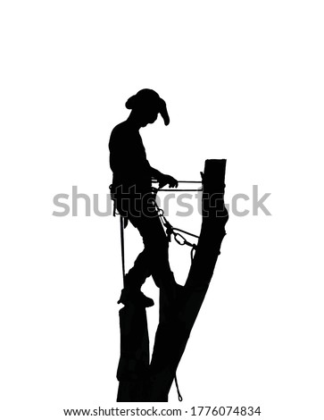 Illustration of a Tree Surgeon or Arborist standing on top of a tall tree stump using his safety ropes. Stock photo ©