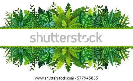 Illustration of a tropical rainforest banner #577945855