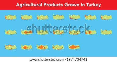 Illustration of agricultural products grown in Turkey in orange on a green map Stok fotoğraf ©