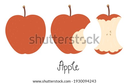 Illustration of an apple, bitten apple, apple core, and hand-drawn text - Apple. Cute flat vector illustration in nice colors. Isolated on white.