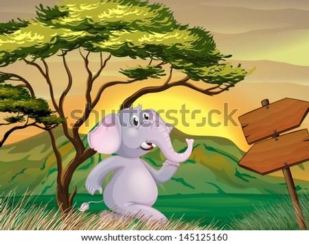 illustration of an elephant