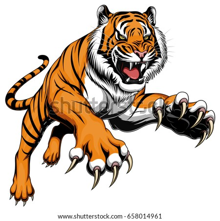 angry tigers vector download free vector art stock graphics images rh vecteezy com tiger vector free tiger vector free