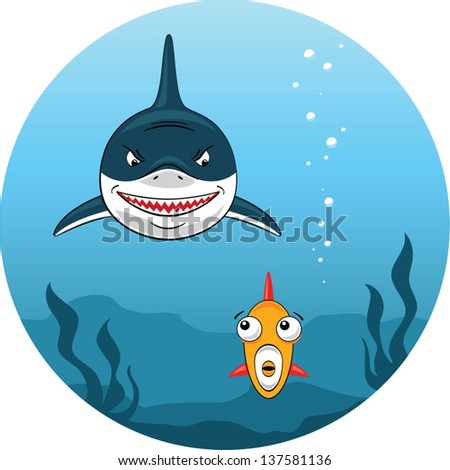illustration of angry shark