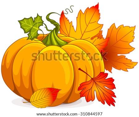 Illustration of Autumn Pumpkin and leaves