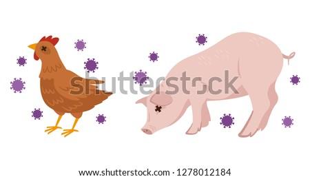 Illustration of avian influenza and swine flu