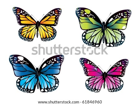 Illustration of beautiful colorful butterflies over a white background