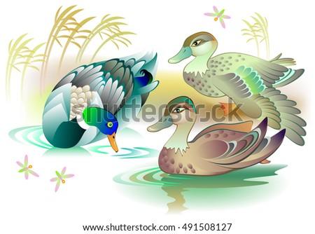 illustration of beautiful ducks