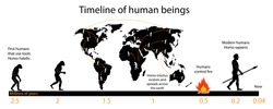 illustration of biology and history, Timeline of human beings, Human evolution, anthropology