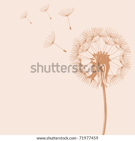 Illustration of Blow Dandelions on color background