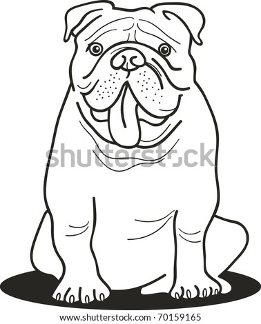 illustration of bulldog for coloring book