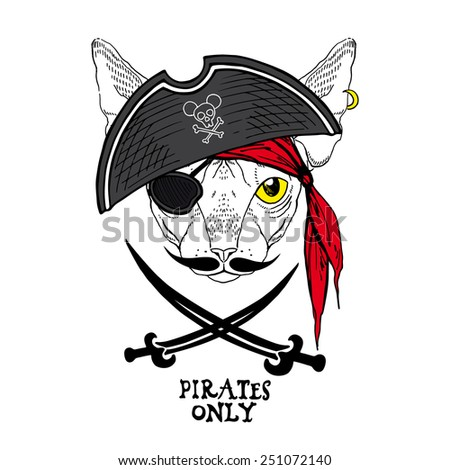 illustration of cat pirate