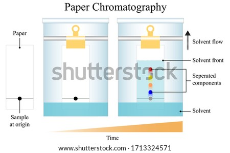 Illustration of chemical. Chromatography is a chemical laboratory technique for the separation of a mixture into its individual components. The mixture is dissolved in a fluid called the mobile phase.