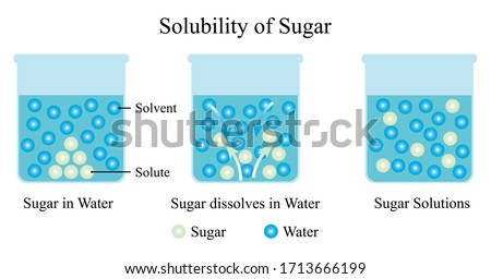 Illustration of chemical. The solubility of sugar and water. Sugar is the solute and water is the solvent that shows in three states of dissolution. Dilute solution. Vector of chemistry education. Сток-фото ©