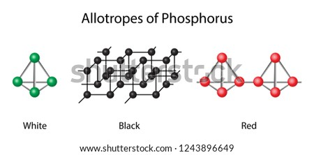 illustration of chemistry, Elemental phosphorus can exist in several allotropes, the most common of which are white and red solids, Gaseous phosphorus exists as diphosphorus and atomic phosphorus
