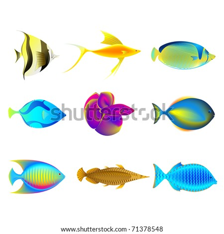 illustration of collection of colorful fishes on isolated background