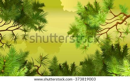 illustration of coniferous