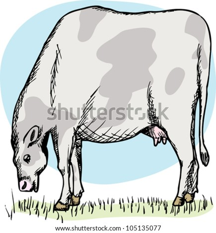 Illustration of cow grazing in a green field over white