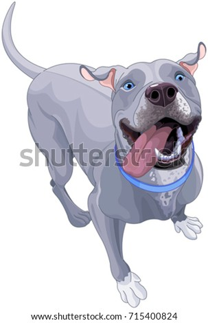 Shutterstock Illustration of cute dog are playing