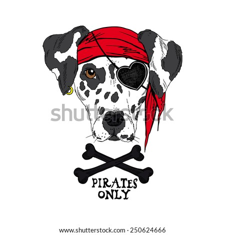 illustration of doggy pirate