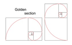 Illustration of double golden spiral (section, ratio, proportion), isolated on white background, vector, eps 8