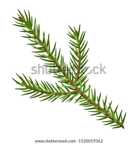 Pine tree clip art pine cones illustration free stock - Clipartix | Tree  branch tattoo, Tree branch crafts, Christmas tree branches
