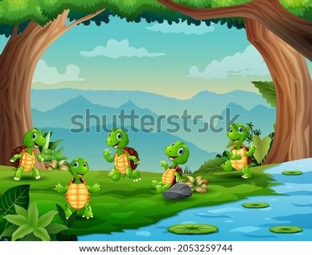 illustration of five turtles
