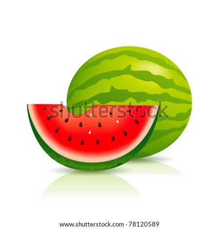 Illustration of fresh Water Melon