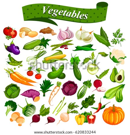 illustration of full collection of different types of fresh and healthy vegetables #620833244