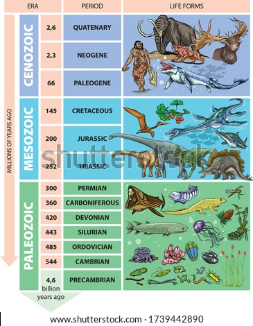 Illustration of geological time scale - periods. Сток-фото ©