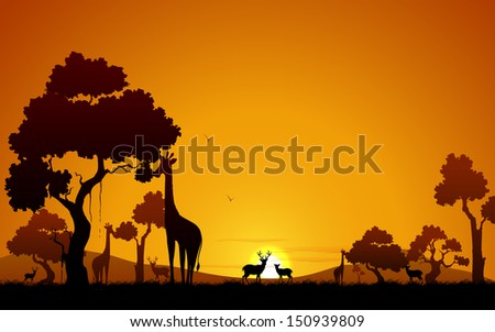 illustration of giraffe and